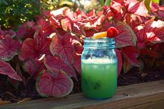 Raise a toast to #spring with a refreshing martini in a jar.