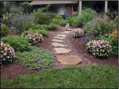 Natural Stepping Stone Path