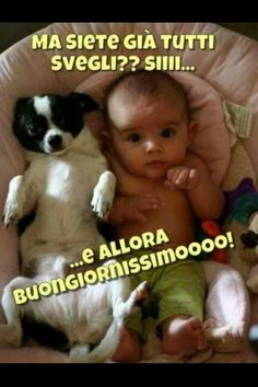 Chihuahua and his Baby. Or Baby and his Chihuahua? :D - chihuahua, Love My Dog, Puppy Love, Cute Baby Animals, Funny Animals, Funny Photos, Cute Pictures, Kid Photos, Random Pictures, Baby Photos