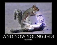 A long time ago in a galaxy far, far away, Star Wars jokes were made (23 Photos)
