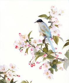 喜鹊海棠 作者: 阿昕 - 涂鸦王国