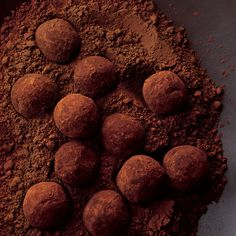 DARK CHOCOLATE TRUFFLES - These are the easiest of all fine-chocolate confections. Once the spheres of chocolate ganache (best-quality chocolate melted with heavy cream and butter) are dusted with cocoa powder, they resemble a mushroom-type delicacy freshly dug from the earth -- the truffle from which they take their name. (=)