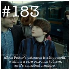 25 Harry Potter Facts Will Accelerate Your HP Craze - Swish Today Harry Potter Puns, Harry Potter Characters, Harry Potter Universal, Harry Potter Hogwarts, Harry Potter World, Draco, Hermione, Harry Potter Christmas Gifts, Harry Potter Next Generation