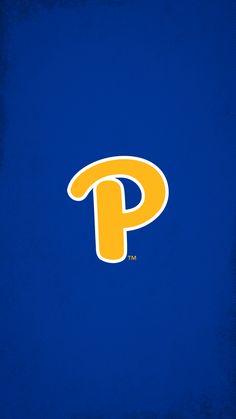 University Of Pittsburgh, Pittsburgh Pa, Pitt Football, College Football, Pitt Panthers, Tech Background, County Seat, Ohio River, Environmental Design