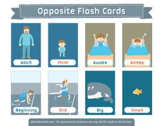 Opposite Flash Cards