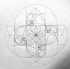 Several fibonacci spirals together