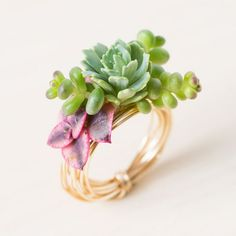 Find out how to make a ring and earrings using real, living succulents! These would be fun for bridesmaids!