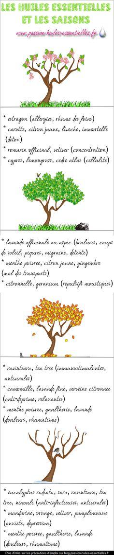 Huiles essentielles & Saisons