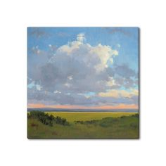 Amazon.com: Gallery Direct 'Afternoon Sky I' Canvas Gallery Wrap by Kim Coulter, 48-Inch by 48-Inch: Prints: Wall Art Feng Shui Artwork, My Canvas, Sky, Wall Art, Amazon, Gallery, Prints, Painting, Heaven