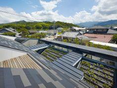 hayato komatsu architects / house in matsuyamamaminami, ehime