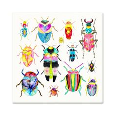 Watercolor Beetles Archival Art Print. Beetle Poster. Colorful
