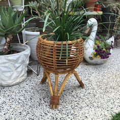 Find some of the latest pieces that have sold at Century Vintage. Plant Holders, Vintage Furniture, Retro Vintage, Planter Pots, Mid Century, Things To Sell, Retro