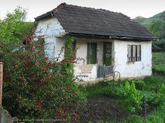 casa veche zona buzau