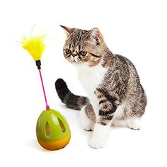 Interactive Cat Dog Toy Tumbler RolyPoly with Assorted Feather Small Bell for PetGreen ** For more information, visit image link. (This is an affiliate link) #CatToys