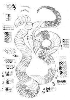 Bad Day at the Ranch Crayon Drawing Book Inspirational Scales Tutorial by Tigrobobr Snake Drawing, Skin Drawing, Snake Art, Anatomy Drawing, Snake Sketch, Drawing Techniques, Drawing Tips, Drawing Reference, Crayon Drawings