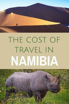 My road trip across Namibia was the best travel experience of my life. But itwas also the most expensive trip I've ever taken. Read about what it costs to travel in Namibia and how to plan for a trip at all different budget levels. Road Trip On A Budget, My Road Trip, Budget Travel, Travel Plan, Cool Places To Visit, Places To Travel, Travel Destinations, Travel Advice, Travel Guides