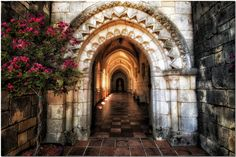 The Ancient Spanish Monastery. Miami, FL.  by Mirenchu Fernandez, via 500px