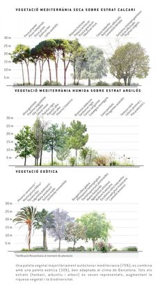 Agence Ter & Ana Coello, Plaza de las Glorias redevelopment - Arquitectura Viva · Architecture magazines