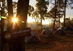 Camp ground, TakSinMaharat National Park, Mae Sod, Tak Thailand #Travel #Thailand ++ English language support >> http://ThailandHolidays7.com