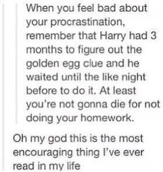 When you feel bad about your procrastination, remember that Harry had three months to figure out the golden egg clue and he waited until like the night before to do it. At least you're not gonna die for not doing your homework. Harry Potter Love, Harry Potter Universal, Harry Potter Fandom, Harry Potter Memes, Just In Case, Just For You, No Muggles, Yer A Wizard Harry, Drarry