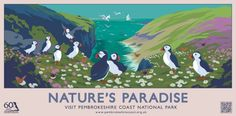 Our award-winning posters and postcards were initially created to celebrate the Pembrokeshire Coast National Park's anniversary in You . Posters Uk, Railway Posters, Illustrations And Posters, Retro Posters, Pembrokeshire Wales, Vintage Travel Posters, National Parks, Images, Postcards