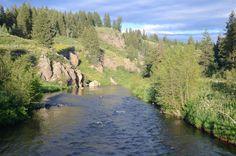 Fly Fishing Idaho Rivers   Robinson Creek at Three Rivers Ranch