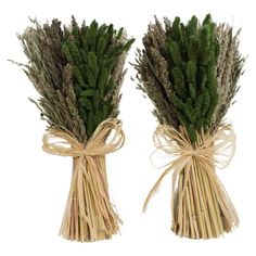 Preserved Millet & Wheat Arrangement (Set of 2)