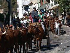 Tradicional Festa do Carro de Boi, Afonso Cláudio, Espírito Santo