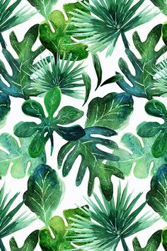 Colorful fabrics digitally printed by Spoonflower - Tropical Leaves Tropical Leaves by crystal_walen - Emerald and lime green hand painted leaves on fabric, wallpaper, and gift wrap. Hand painted watercolor tropical plants by indie designer Crystal Walen. Plant Wallpaper, Tropical Wallpaper, Green Wallpaper, Pattern Wallpaper, Wallpaper Backgrounds, Iphone Wallpaper, Fabric Wallpaper, Wallpapers, Wallpaper Ideas