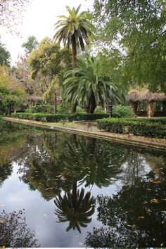 Parque de Maria Luisa - Sevilla - Spain