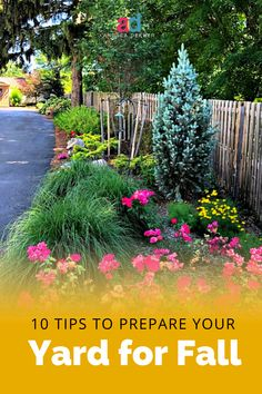 10 Ways We Prepare Our Home and Yard for Fall Autumn Garden, Easy Garden, Fall Plants, Garden Plants, Gardening For Beginners, Gardening Tips, Cottage Front Doors, Fall Cleaning, Yard Waste