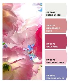 ColorSnap by Sherwin-Williams – ColorSnap by Pamc