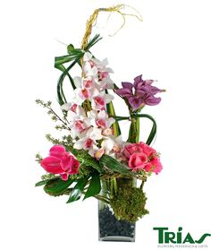 1000 Images About Flower Professionals On Pinterest