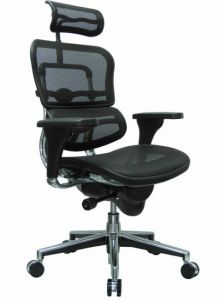 Is This The Rolls Royce Of Ergonomic Chairs Desk Office Mesh Chair