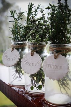 How to grow a kitchen garden! Tips on growing herbs and creating unique containers!- add dried herbs as decor around kitchen! Plant Markers, Garden Markers, Garden Art, Garden Design, Garden Tips, Daily Holidays, Kitchen Herbs, Herbs Indoors, Growing Herbs