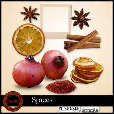 Spices Elements #CUdigitals cudigitals.com cu commercial digital scrap #digiscrap scrapbook graphics