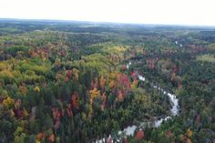 Sights And Sounds Drone Edition Au Sable River