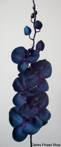 MIDNIGHT BLUE MOTH ORCHID SILK FLOWER STEM - ARTIFICIAL/WEDDING