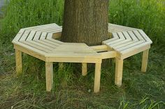 Tree bench.  Would be neat to have some built in seating outside the house.