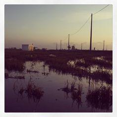 Ebre river delta  #TerresdelEbre #Catalonia #Spain