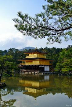 Golden pavillion, Japan