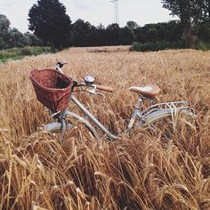 marinaiw: A warm summer evening… Old Bicycle, Bicycle Art, Wheat Fields, Country Life, Country Living, Down On The Farm, Perfect World, Vintage Bikes, Places Around The World
