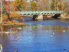 Two Bridges, Lincoln Park, Wayne and Fairfield, NJ