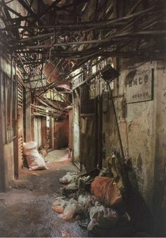 Kowloon: Inside A Walled City - Likes