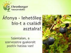 Áfonya - lehetőleg bio-t a családi asztalra - antioxidáns by SeresBim via slideshare  http://www.dr-ehrenberger.hu/afonya-lehetoleg-bio-t-csaladi-asztalra/