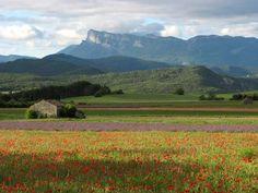 Plateau des chaux - Vallée de Gervanne