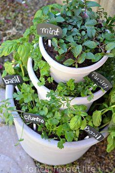 Pots entassés pour cultiver des plantes aromatiques
