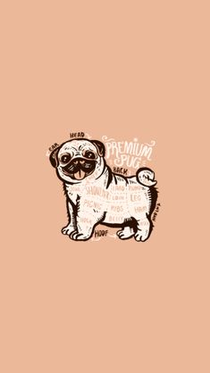 Chubby Puppies, Puppies And Kitties, Doggies, Pug Tattoo, Tattoos, Pug Breed, Animals And Pets, Cute Animals, Cute Pugs