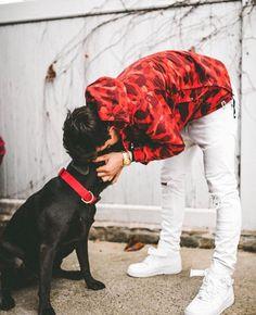 Awwwwwww he's wearing noodle's jacket