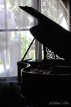 I've always loved the look and music created by these grand pianos.A perfect room filled with delightful atmosphere , with a window that leads to the eye to the statues and park beyond...